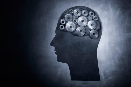 5-brain-based-behaviours-successful-leaders-employ